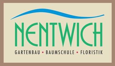 Nentwich